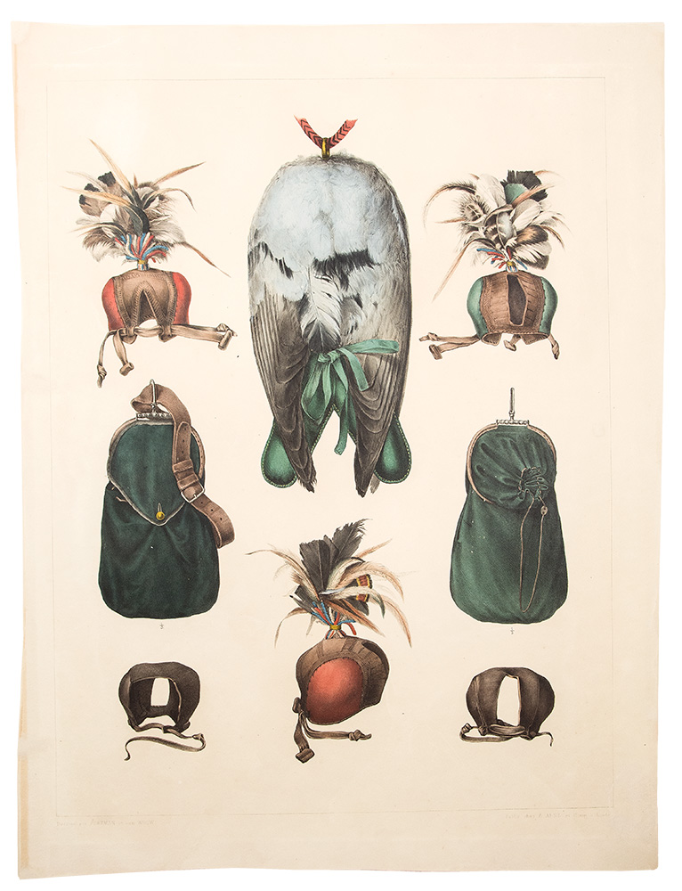 [Pair of hand colored plates from Traité de Fauconnerie, depicting falconry accoutrements]. Hermann SCHLEGEL.