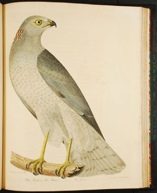 American Ornithology; or, the Natural History of Birds inhabiting the United States, not given by Wilson.
