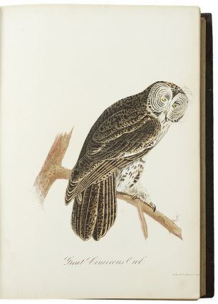 Ornithology and Oölogy of New England. Edward A. SAMUELS