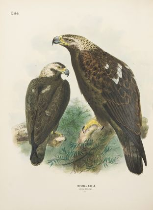 A History of the Birds of Europe, including all the species inhabiting the Western Palaearctic...